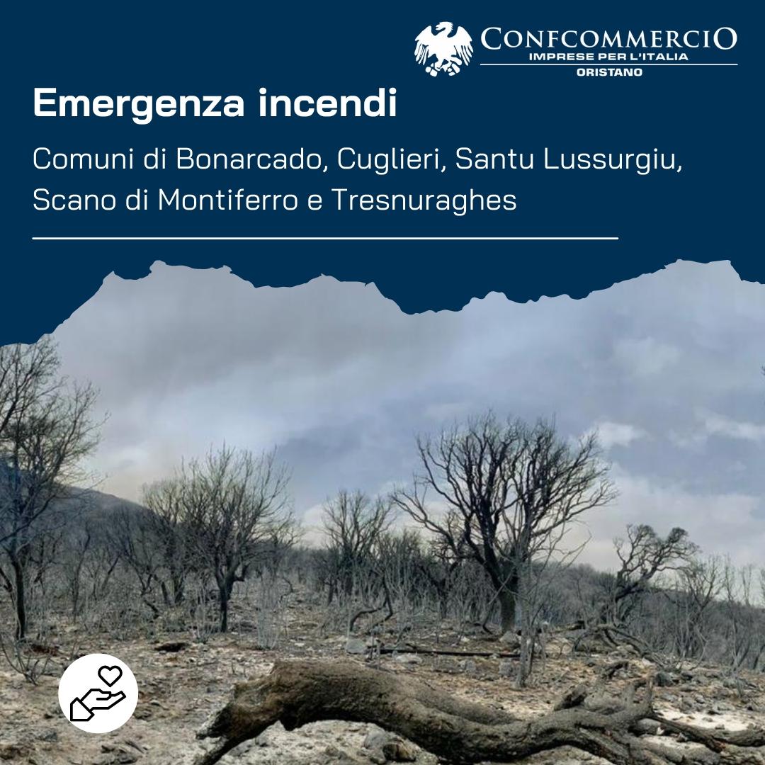 Emergenza incendi - Raccolte fondi ufficiali