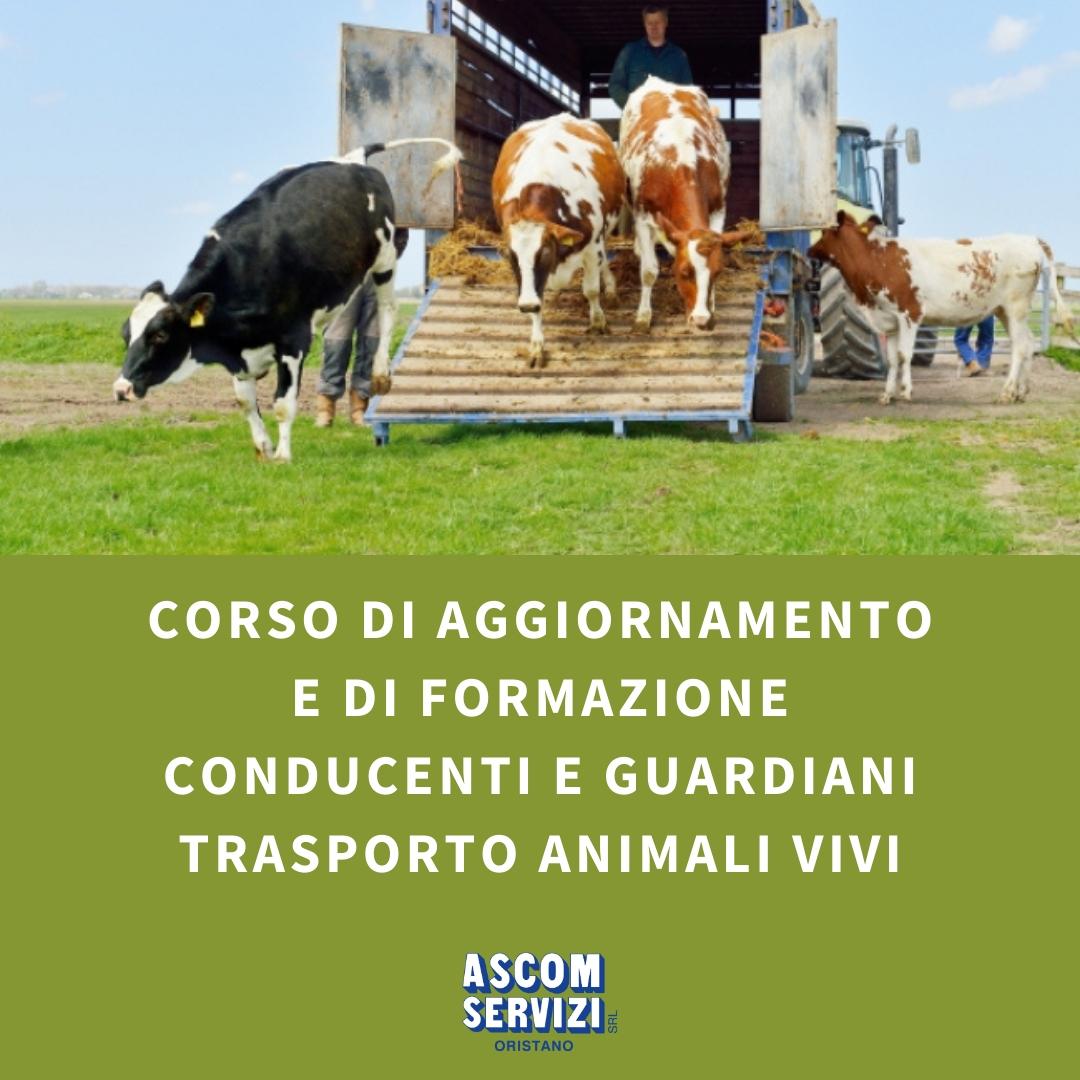 CORSO TRASPORTO ANIMALI VIVI