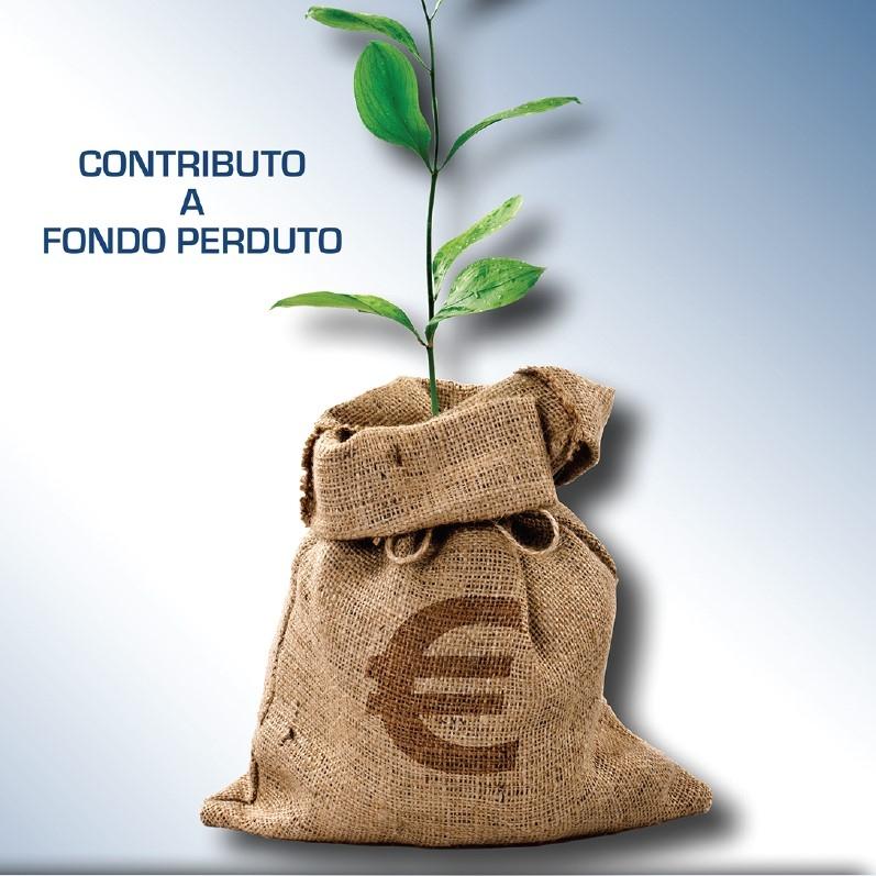 Fondo perduto. Domande dal 15 giugno